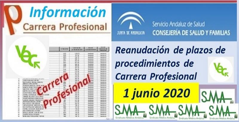 Reanudación de cómputo de los plazos de los procedimientos Carrera/Desarrollo profesional.