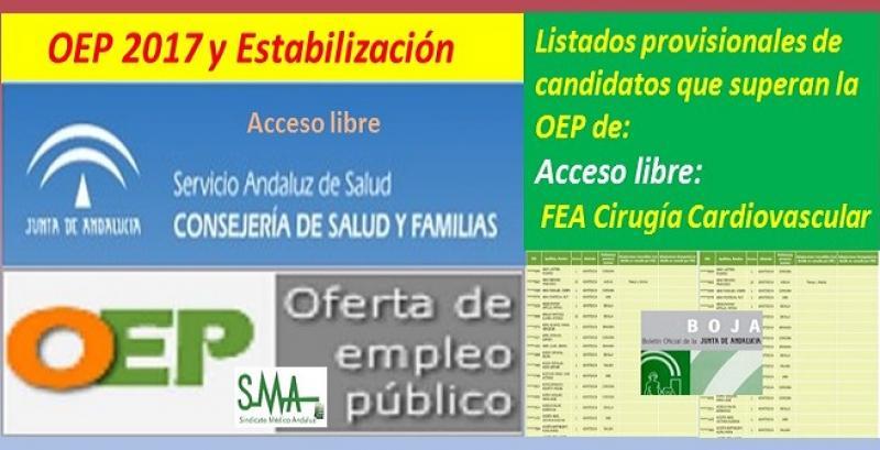 OEP 2017-Estabilización. Listado provisional de personas que superan el concurso-oposición de FEA de Cirugía Cardiovascular (acceso libre).