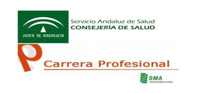 Informe sobre carrera profesional 1er corte de 2012