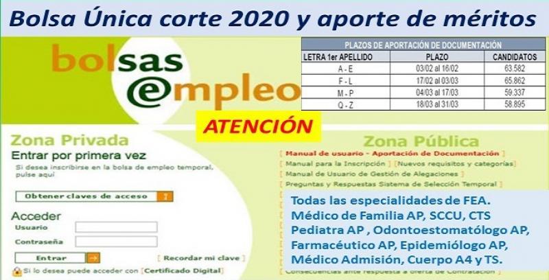 Previsión de publicaciones de Bolsa Única corte 2020 y aporte de méritos.