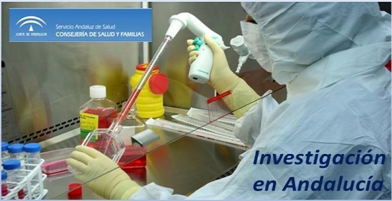 Andalucía: nuevas condiciones para la intensificación de actividad investigadora.
