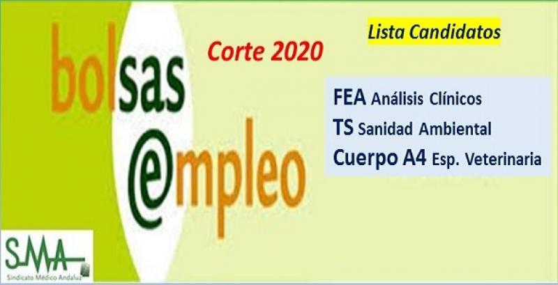 Bolsa. Listas definitivas de candidatos (corte 2020) de FEA de Análisis Clínicos, Cuerpo A4, especialidad Veterinaria y TS Sanidad Ambiental.
