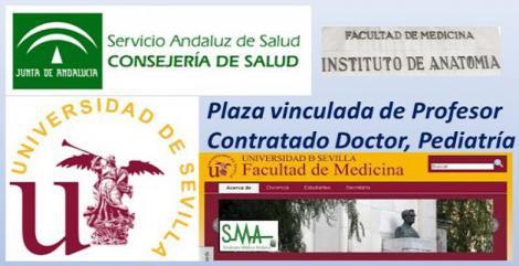 Convocado concurso público de la Universidad de Sevilla y el SAS para plaza de profesor contratado doctor con plaza vinculada.