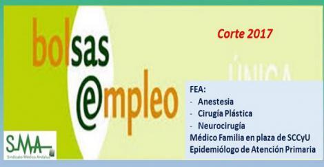 Bolsa. Publicación de listas de aspirantes con actualización del baremo de méritos (corte 2017) de Epidemiólogo de AP; Médico de Familia SCCyU y FEA de Anestesia, Cia. Plástica y Neurocirugía.