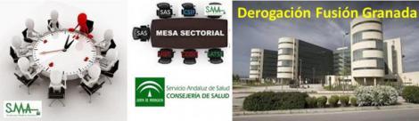 Aprobada en Mesa sectorial la orden que deroga la fusión hospitalaria de Granada.