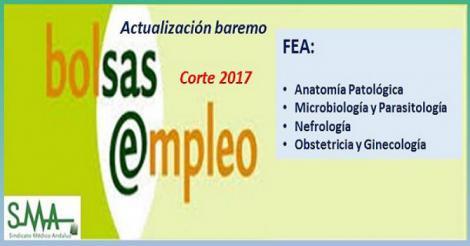 Bolsa. Publicación de listas de aspirantes con actualización del baremo de méritos (corte 2017) de FEA: A. Patológica, Microbiología, Nefrología y Ginecología.