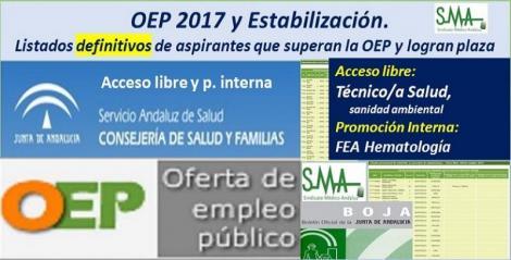 OEP 2017-Estabilización. Listados definitivos de personas aspirantes que superan el concurso-oposición y logran plaza, de FEA Hematología, promoción interna y Técnico/a de Salud (sanidad ambiental), acceso libre.
