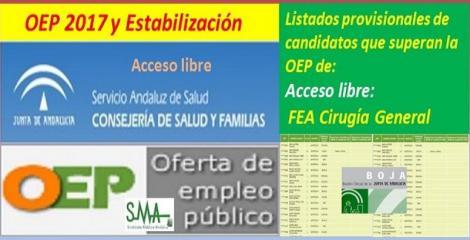 OEP 2017-Estabilización. Listado provisional de personas que superan el concurso-oposición de FEA de Cirugía General, acceso libre.