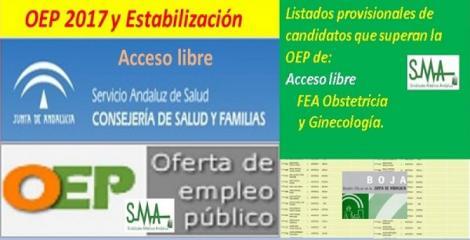 OEP 2017-Estabilización. Listado provisional de personas que superan el concurso-oposición de FEA Obstetricia y Ginecología, acceso libre.