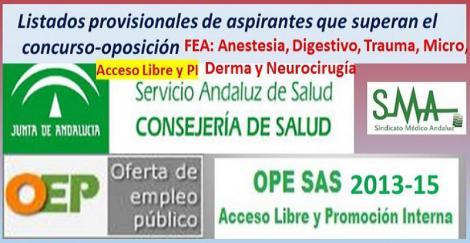 OPE 2013-15. Listados provisionales de personas aspirantes que han superado el concurso-oposición acceso libre y PI de varias especialidades FEA.
