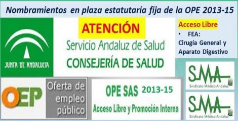 Publicados en el Boja los nombramientos como personal estatutario fijo de FEA de Cirugía General y Aparato Digestivo (acceso libre) de la OPE 2013-2015.
