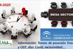 Mesa Sector