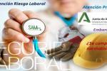 Salud Labor