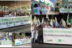Protestas A