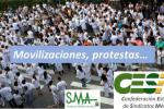 Movilizacio